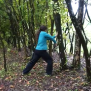 arbre tigre 2