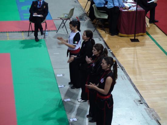 Championnat du monde 2010 style traditionnel