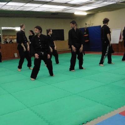 Newsestlyonnais stage kung fu